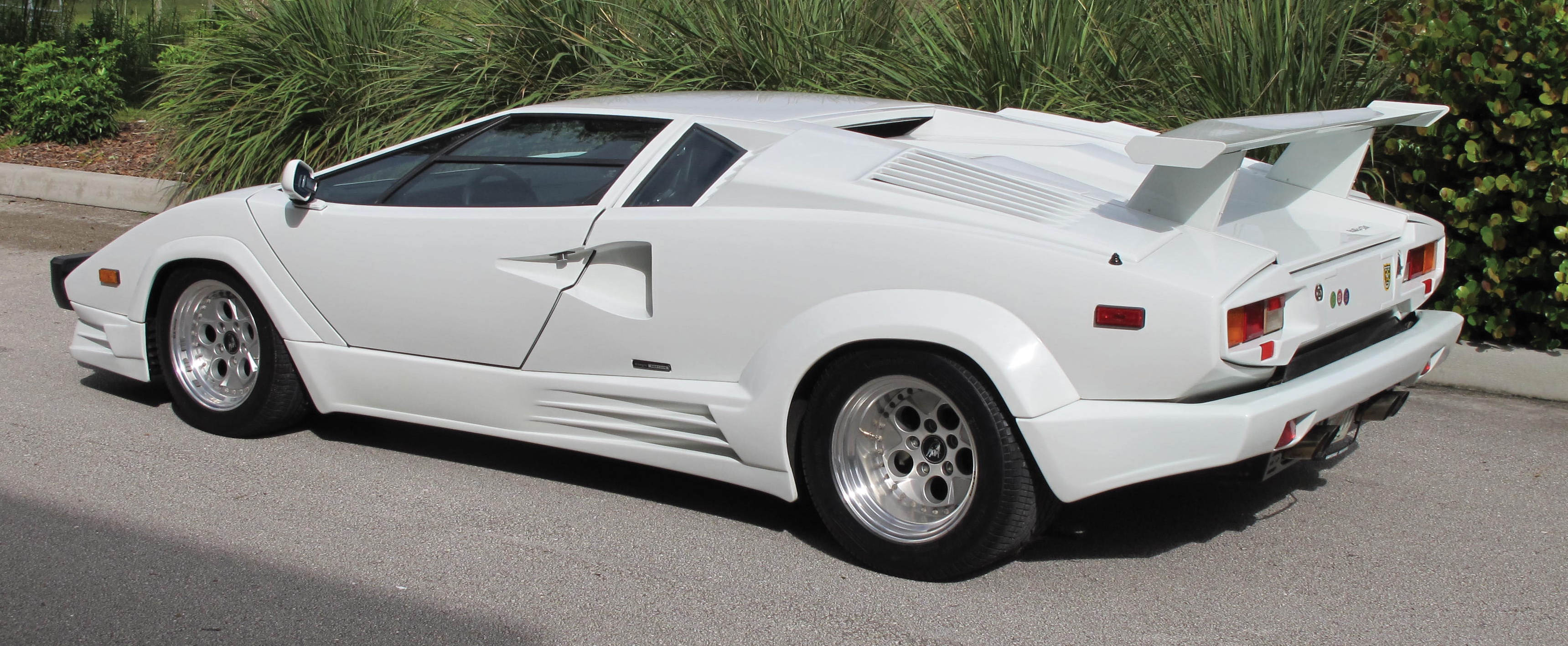 anniversary edition countach among star cars for sale at hilton head island