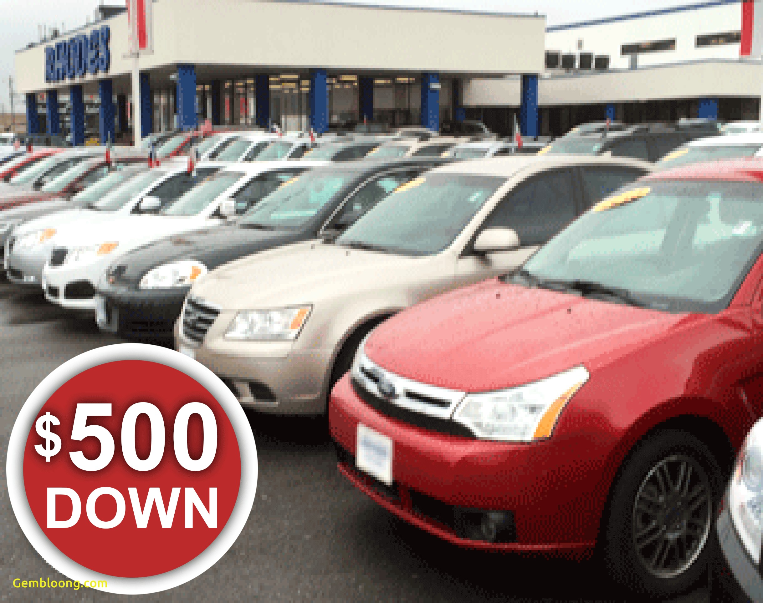 fresh used car lots near me