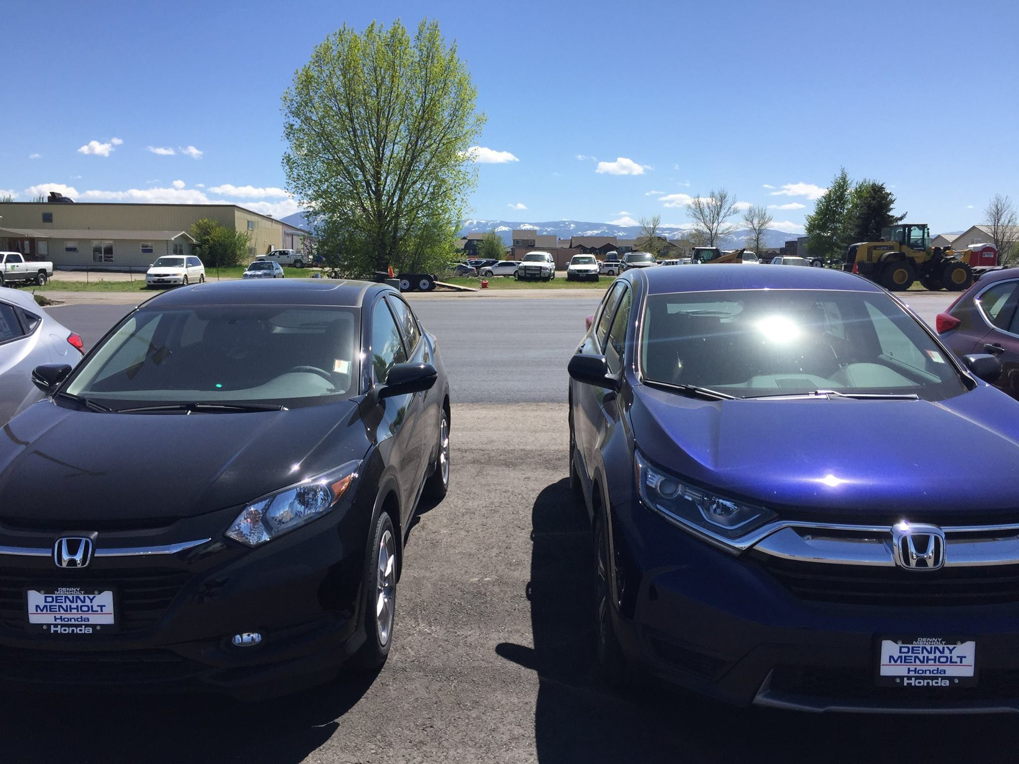 a row of used cars bozeman for sale