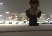 """Give Me the Carfax Elegant Show Me the Carfax"""" the Car Fox"""