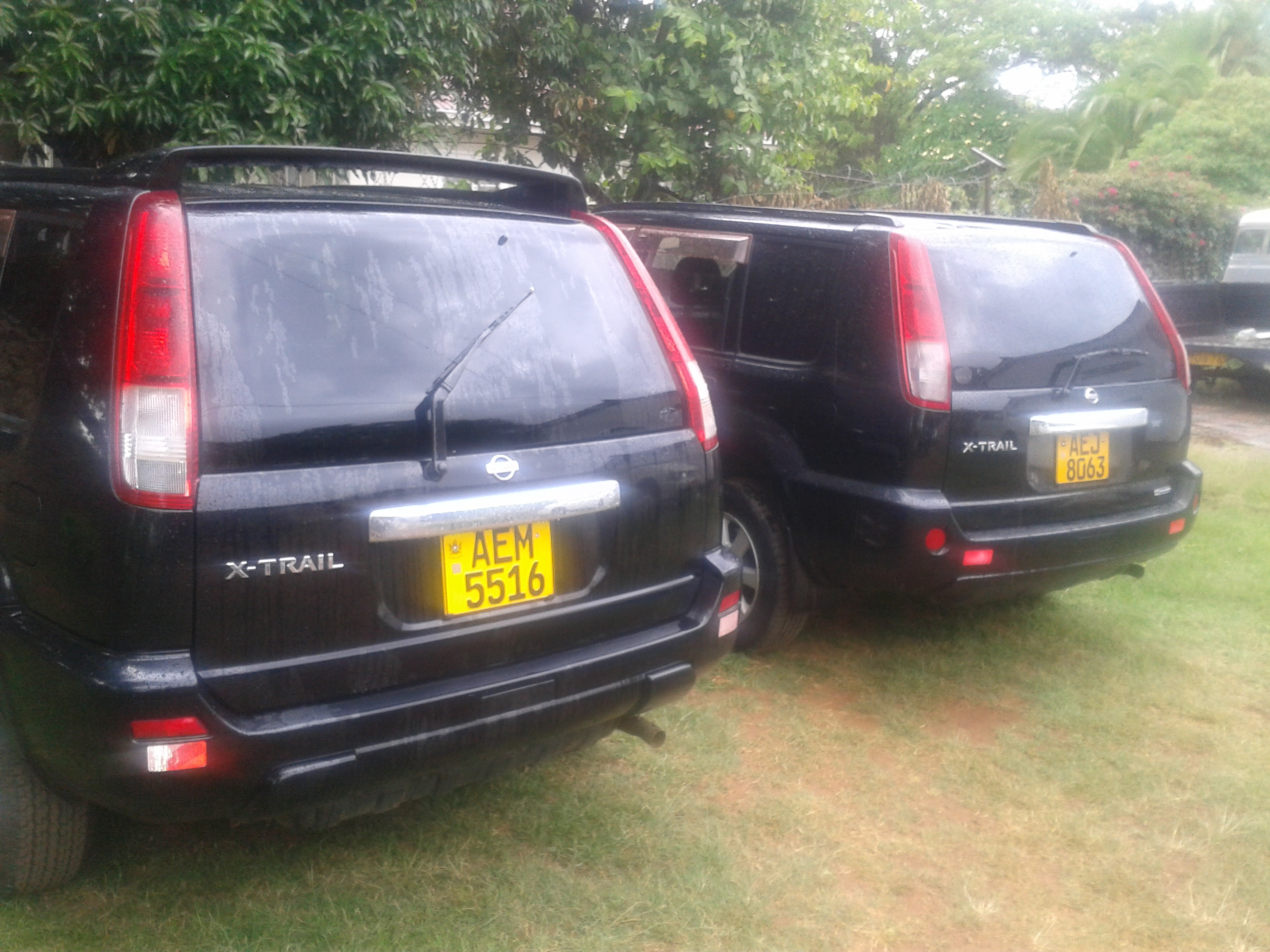 Cars for Sale Classifieds Zimbabwe Fresh Eazy Rent A Car In Zimbabwe Connect8 Zimbabwe