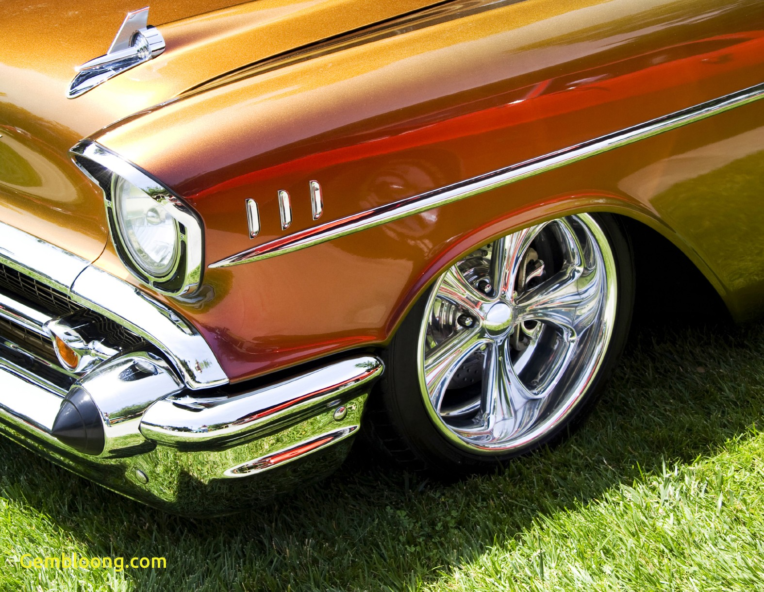 we can also import drag cars and drag bikes race cars and race bikes off road american muscle cars for sale