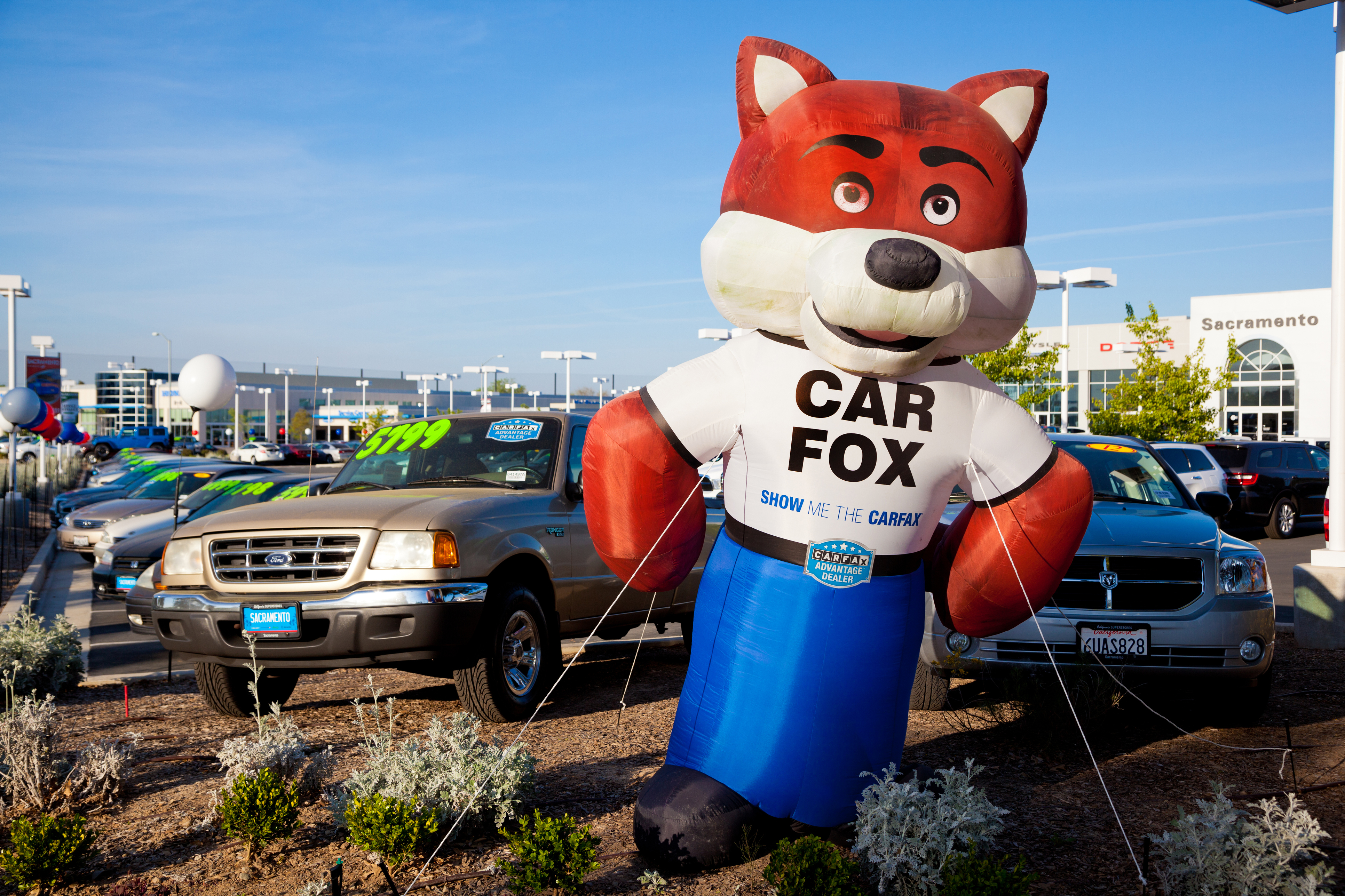 Carfax Special Offers Luxury asa Offers Sample Vendor Data Pact after Carfax Leak Produces Irate