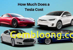 How Much Tesla Truck Cost Beautiful How Much Does A Tesla Cost True Cost Of All Tesla Cars
