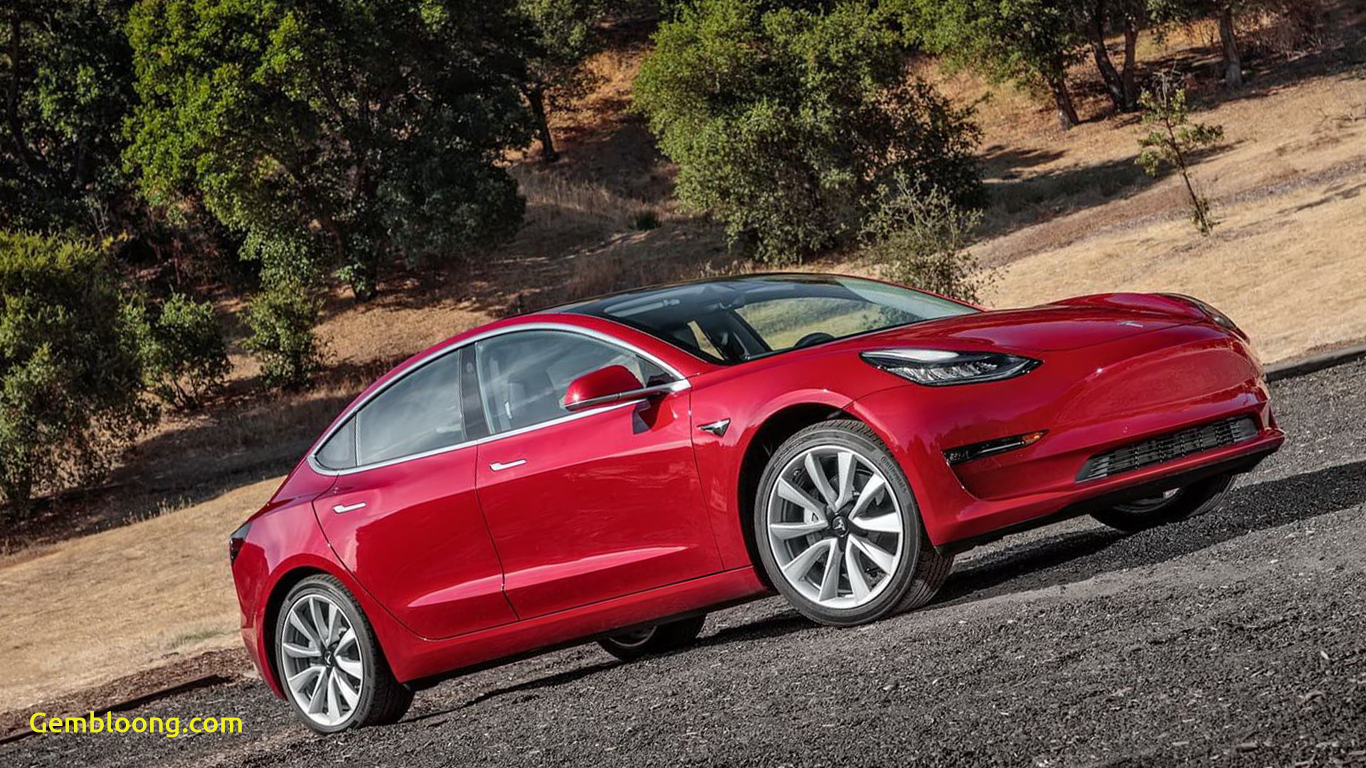 Tesla 2020 Model 3 Unique Tesla Model 3 Specs and First Pictures Cars Previews