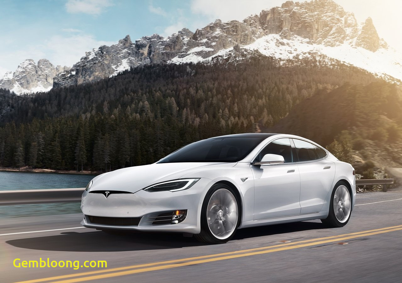 Tesla Inc Elegant Tesla Inc is at War with the German Government as It