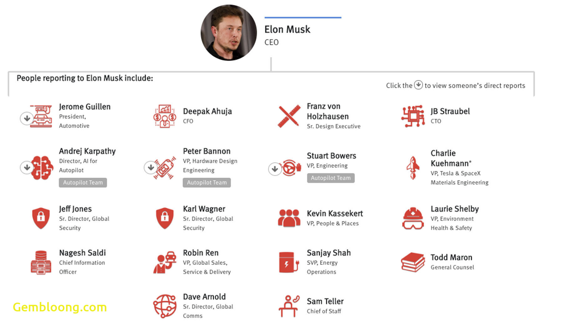 Tesla organizational Structure Best Of the 200 People Behind Tesla Autopilot the Information