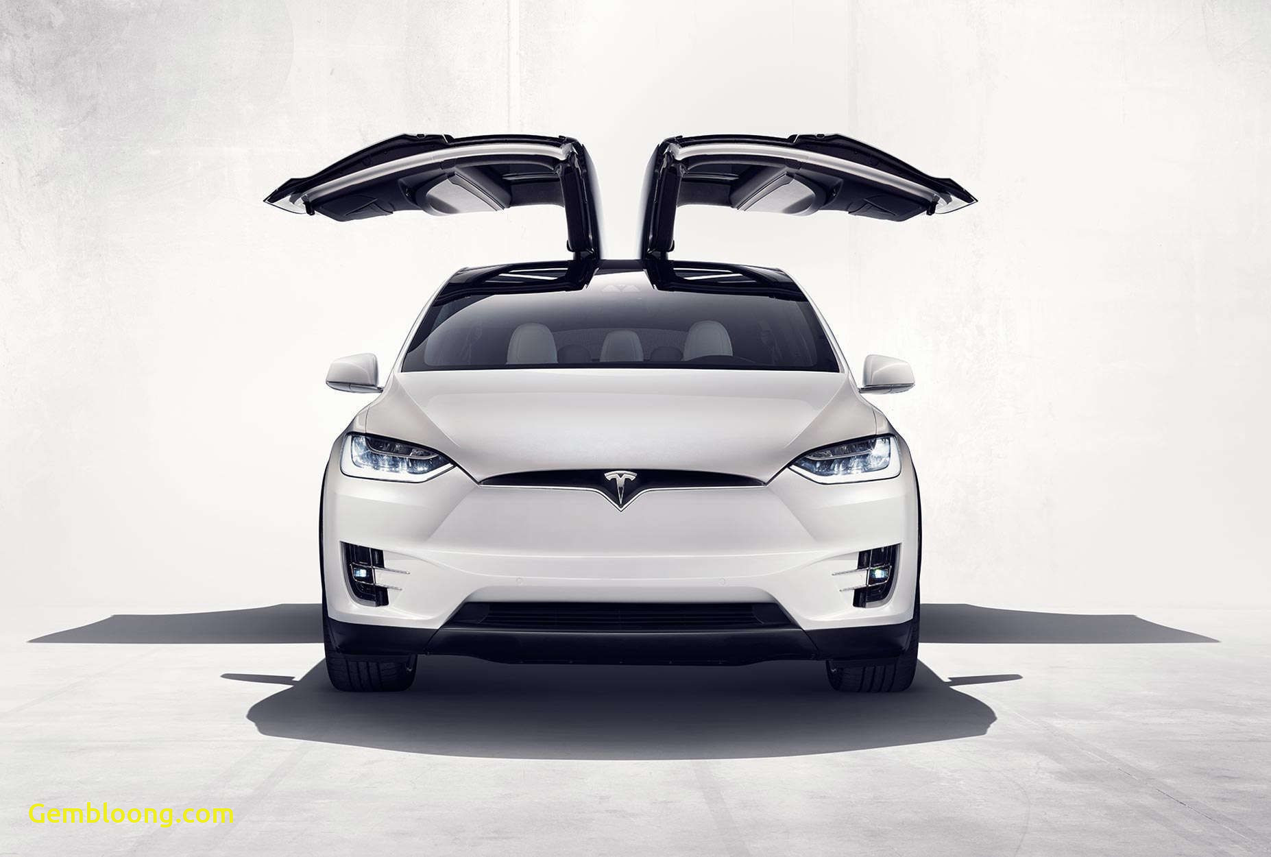 Awesome Tesla with Wings