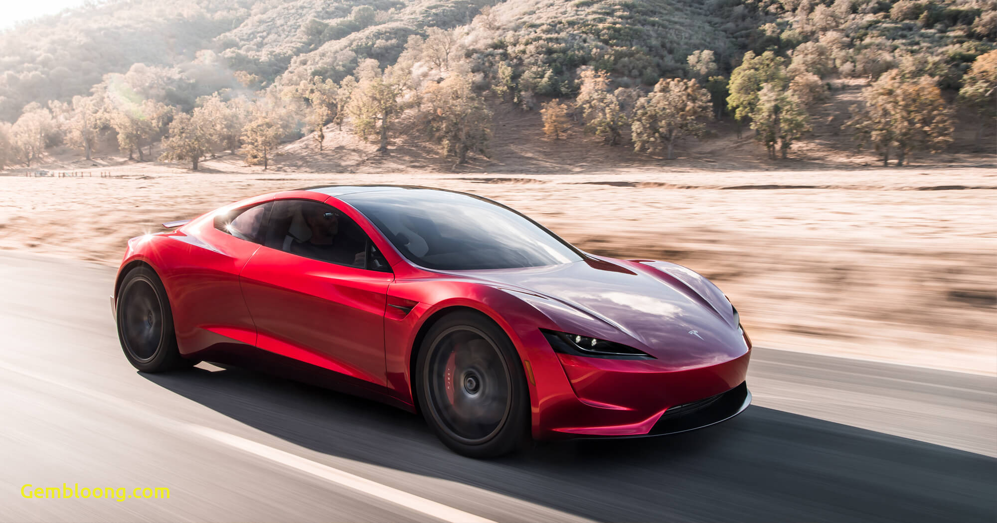 What Tesla is the Fastest Luxury Tesla Reveals Fastest Production Car In the World