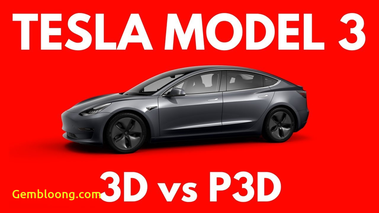 What Tesla Should I Get Beautiful which Tesla Model 3 Should You Get Standard or