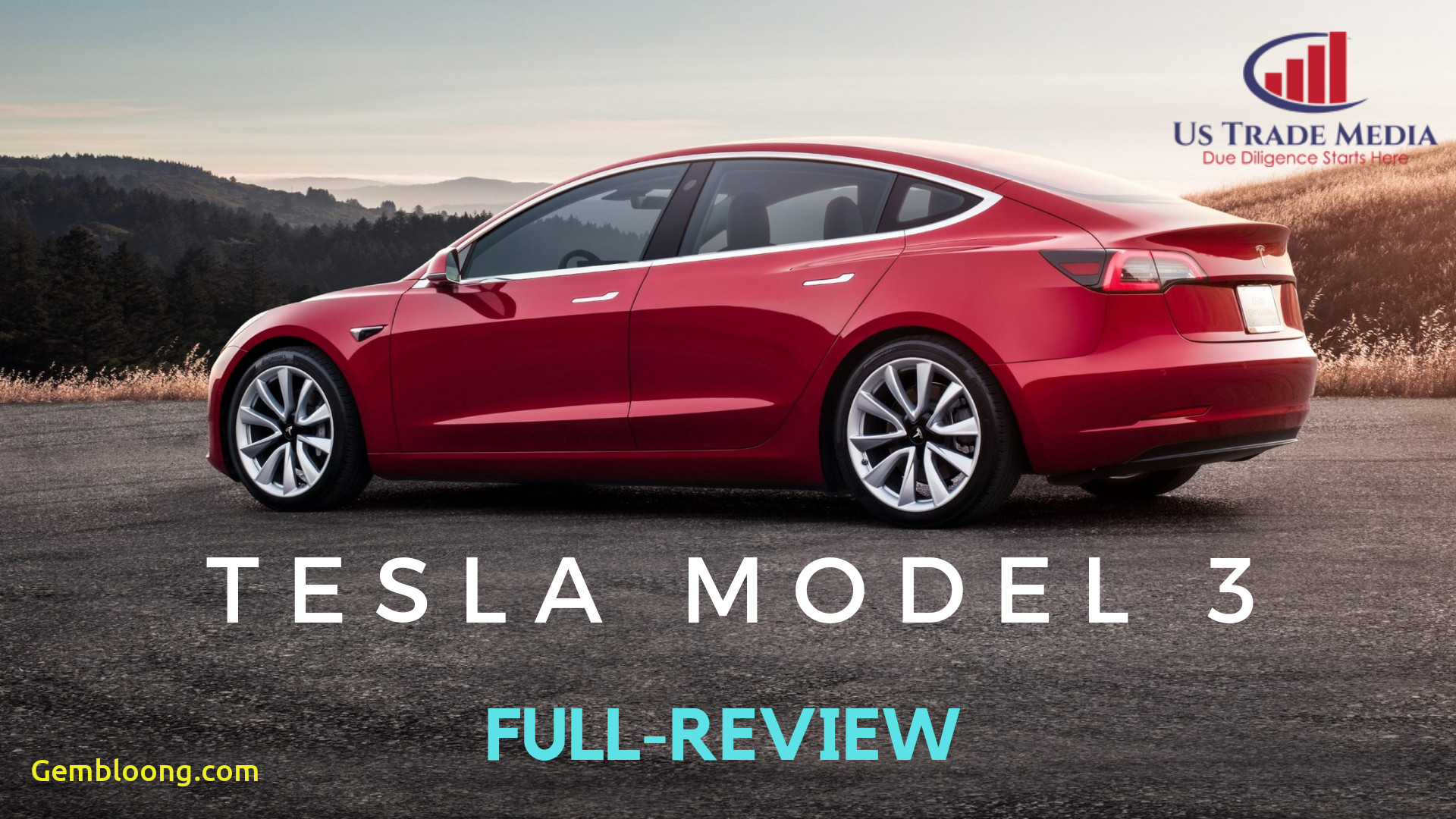 What Tesla Should I Get Fresh Reasons why You Should or Should Not Buy Tesla Model 3