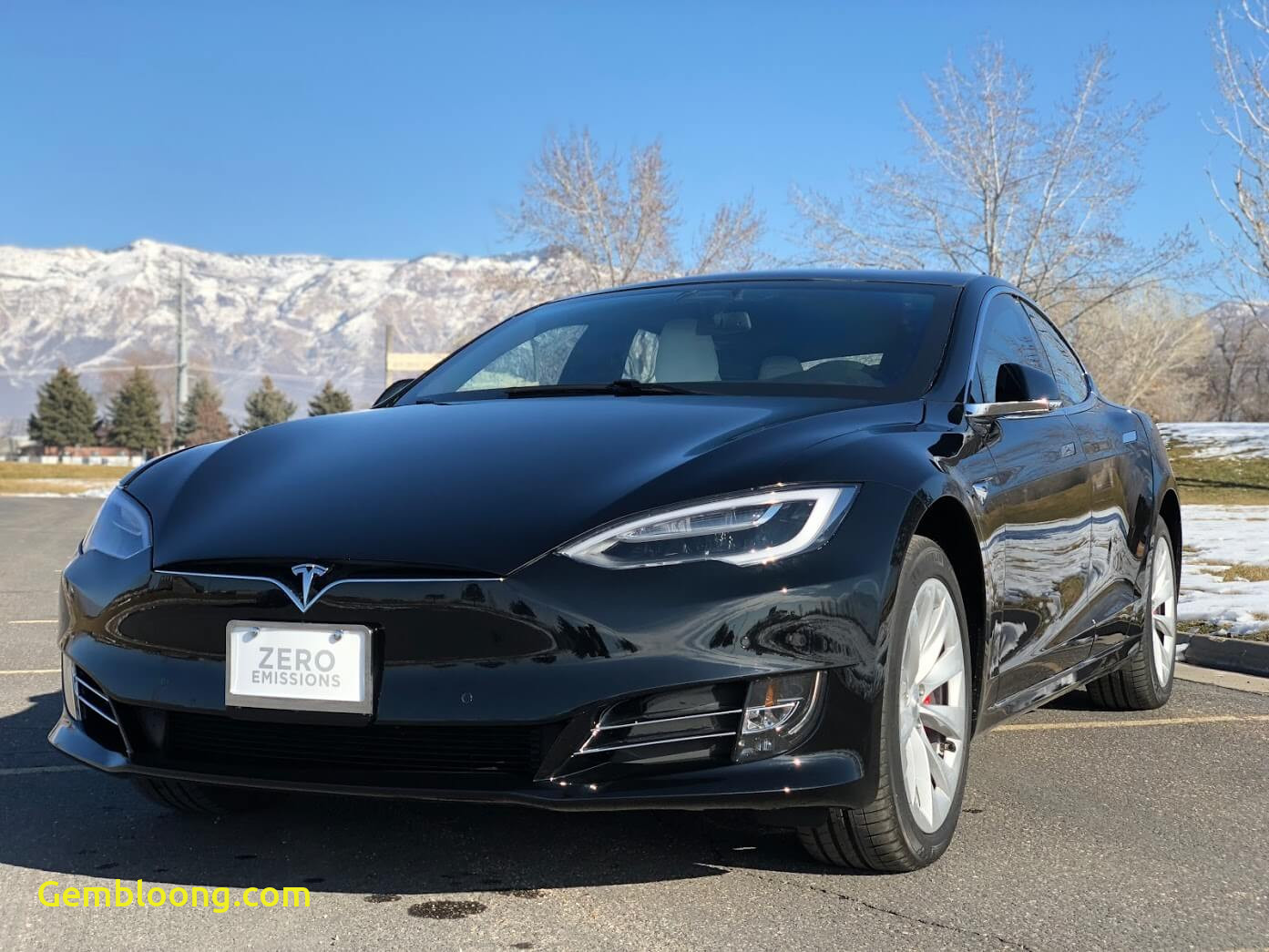 Which Tesla Model is the Fastest Beautiful Fastest Bulletproof Car In the World Armored Tesla Model