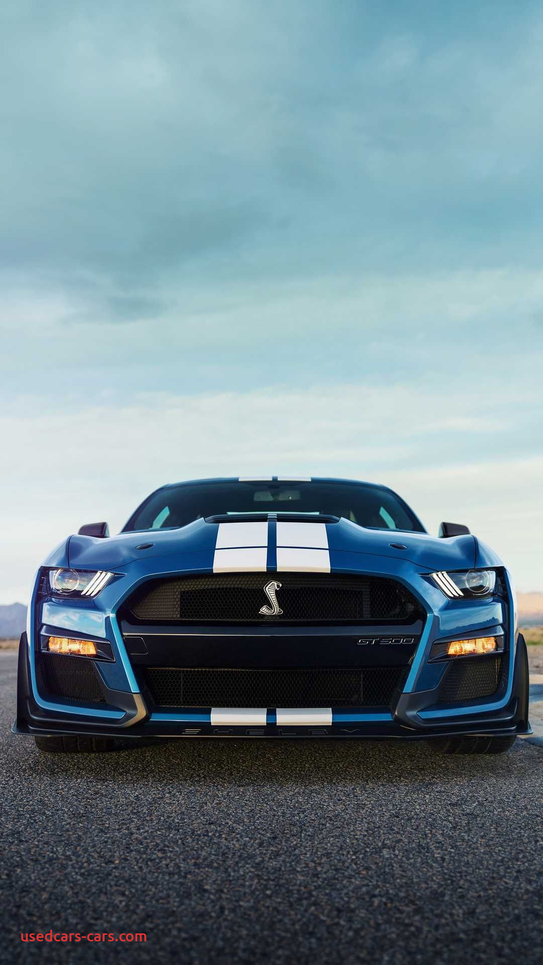 Ford 2020 Mustang Gt500 Luxury Follow Yasholo Unreal Shakespeare
