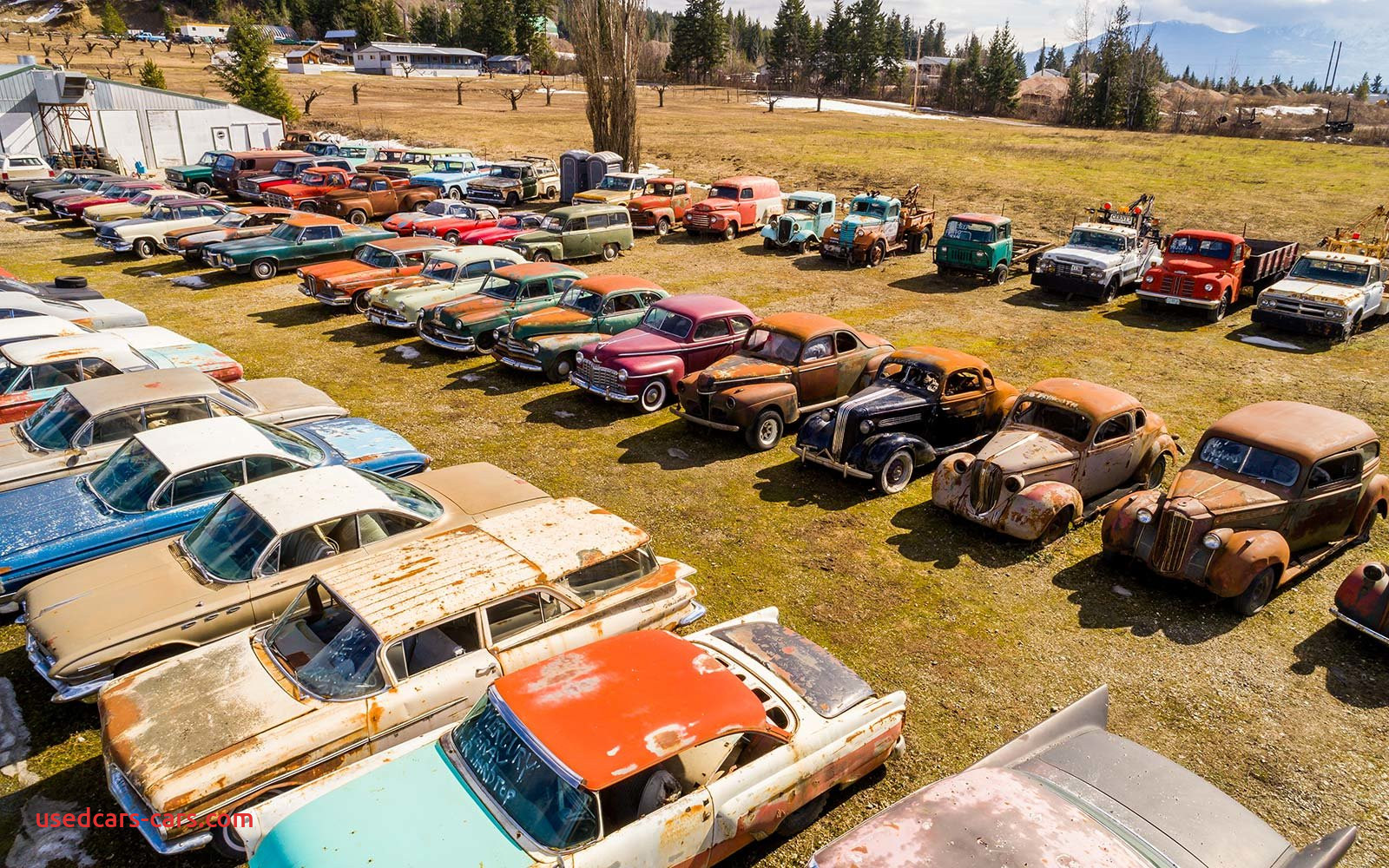 Does Graveyard Carz Sell Cars Awesome How to Move to Canada and Live In A Vintage Car Cemetery