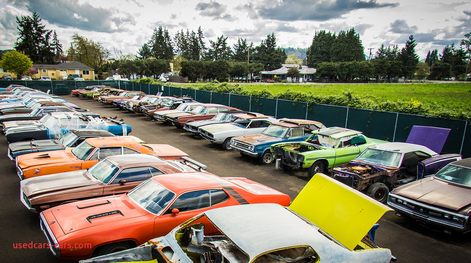 """Does Graveyard Carz Sell Cars Unique Graveyard Carz On Twitter """"happiness It Does Exist"""