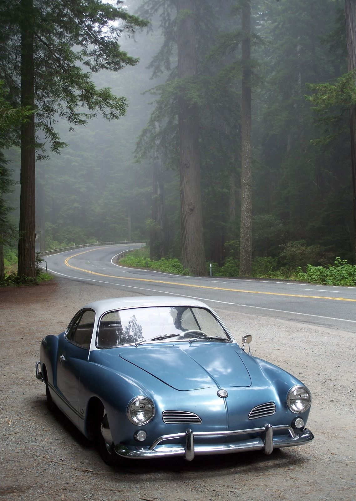 Classic Cars You Can Daily Drive Fresh the Rotten Wonderland Bild