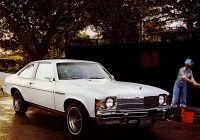 Faxcar Beautiful Images Of Buick Skylark S R Coupe 1976
