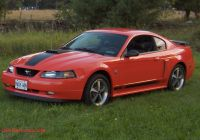 Ford Mustang 2004 Best Of 2004 ford Mustang Overview Cargurus