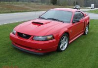 Ford Mustang 2004 Unique 2004 ford Mustang Pictures Cargurus