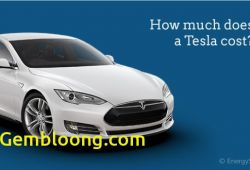 Best Of How Much Tesla Car Cost