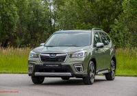 Subaru forester Luxury 2020 Subaru forester Eboxer News and Information