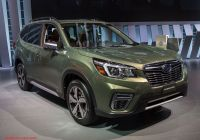 Subaru forester New 10 Things You Don T Know About the All New 2019 Subaru