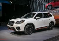 Subaru forester Unique 2019 Subaru forester First Look Ready for the Cr V and Rav4