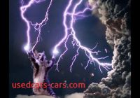 Tesla Electricity Inspirational Teslas Interest In Electricity Sparked by His Cat True