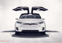 Tesla Falcon New Affordable Teslas Elon Musk is About to Take Your Brain