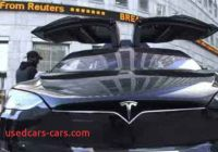 Tesla or Tezla Awesome Tesla Vs Tree Pirates War Over A Berlin forest One News