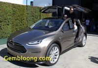 Tesla with Gullwing Doors Lovely Tesla Debuts Luxury Electric Crossover