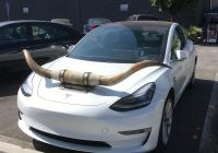 Tesla with Horns Beautiful Saw This In Hollywood Yesterday A Tesla with Bull Horns