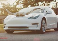 Tesla with Horns Luxury Tesla Owners Will Be Able to Honk with Fart and Goat