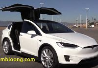 Tesla with Wings Beautiful Tesla and Model X Falcon Wing Door Parts Supplier Agree to