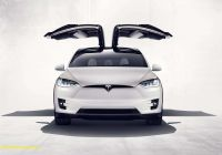 Tesla with Wings New Affordable Teslas Elon Musk is About to Take Your Brain