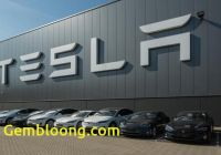 Tesla Zacks Awesome Tabula Rasa Tesla Roku and Netflix as Zacks Bull and