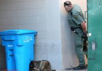 Used Cars for Sale Roanoke Va New Coyote Prompts Minor Stand Off Outside Roanoke City Jail