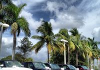 Used Cars for Sale West Palm Beach Beautiful Pin On Land Rover Palm Beach