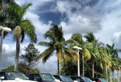 Inspirational Used Cars for Sale West Palm Beach