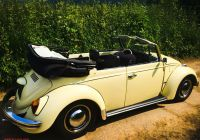 Volkswagen Beetle 1969 Beautiful 1969 Vw Beetle Karmann Cabriolet L19k Yukon Yellow