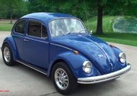 Volkswagen Beetle Blue Best Of How Much Do You Know About Volkswagen