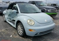 Volkswagen Beetle Hatchback Awesome Volkswagen New Beetle 2005 3vwcm31y15m — Auto Auction