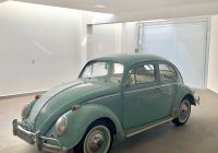 Volkswagen Beetle Ultima Edition Fresh 617 Best Shelly Beetle Images