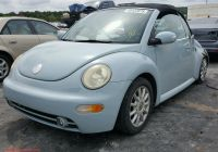 Volkswagen Beetle Van for Sale Luxury Volkswagen New Beetle 2005 3vwcm31y15m — Auto Auction