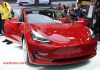 What Tesla Made for Us Unique First China Made Tesla Model 3 Booked In 3 Minutes