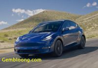 Will Tesla Survive Lovely Will the Tesla Model Y Live Up to Expectations Ev Meme